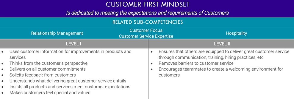 Competency Modeling for Customer First Mindset