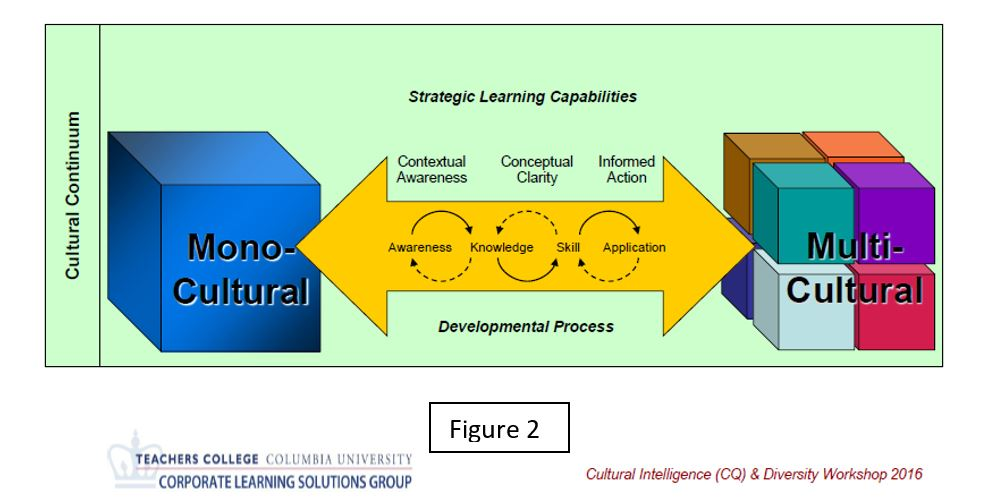 Multicultural Developmental Process by Teachers College at Columbia University's Corporate Learning Solutions Group