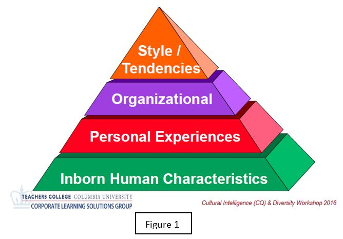 Diversity Pyramid by Teachers College of Columbia University's Corporate Learning Solutions Group