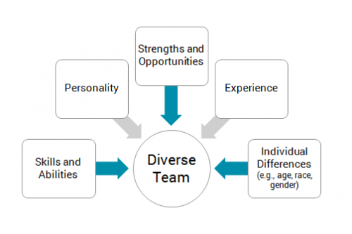 Skills and Abilities, Personality, Strengths and Opportunities, Experience, Individual Differences (e.g., age, race, gender) make a Diverse Team